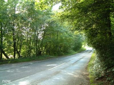 Longdown Hill Cadsden