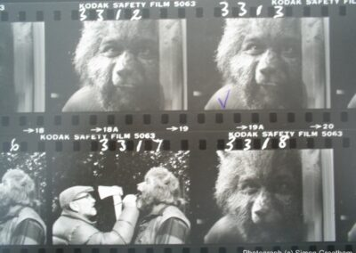 Contact sheet for Children of The Full Moon